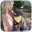 Photo 2 - German Shepherd Dog Mix Puppy for adoption in San Diego, California - Bugsy
