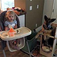 Adopt A Pet :: Miata - Irvine, CA