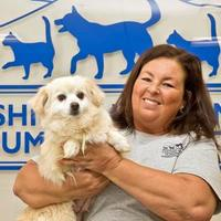 Adopt A Pet :: ABBY - Cashiers, NC