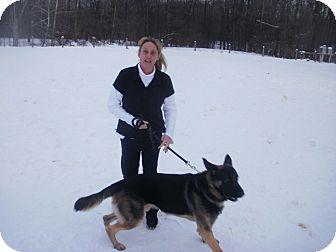 German Shepherd Dog Dog for adoption in Quincy, Indiana - Chochise