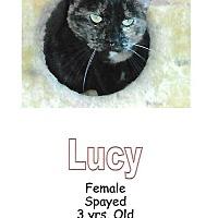 Adopt A Pet :: Lucy - Fort Scott, KS