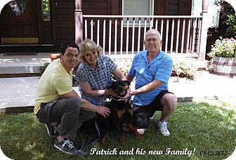 Rottweiler Dog for adoption in Darlington, Maryland - Patrick