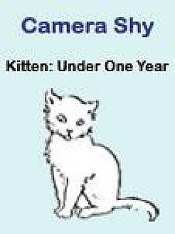 Domestic Shorthair Kitten for adoption in Roseville, California - Rue