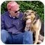 Photo 4 - German Shepherd Dog Puppy for adoption in Los Angeles, California - Daisy von Denzinger