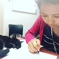 Adopt A Pet :: LM-Olivia - Devon, PA