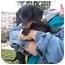 Photo 2 - Dachshund Dog for adoption in Lexington, Missouri - Roy