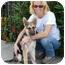 Photo 4 - German Shepherd Dog Puppy for adoption in Los Angeles, California - Dallas von Chapin