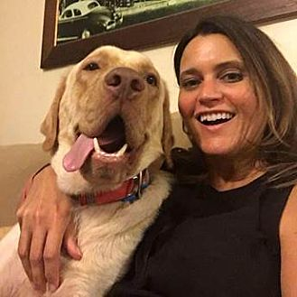 Labrador Retriever Mix Dog for adoption in Austin, Texas - Rex