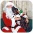 Photo 3 - American Pit Bull Terrier Mix Dog for adoption in Berkeley, California - Etta