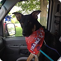 Adopt A Pet :: Spartacus - Silver Lake, WI