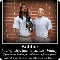 Adopt A Pet :: Robbie - Indian Trail, NC