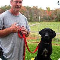 Adopt A Pet :: Friendly - Greencastle, NC