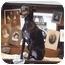 Photo 1 - Italian Greyhound Dog for adoption in Costa Mesa, California - Spike - OC