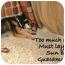 Photo 4 - Shiba Inu Mix Dog for adoption in Cincinnati, Ohio - Lucky