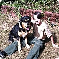 Adopt A Pet :: Winnie *VIDEO* - Columbia, SC