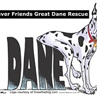 Great Dane Dog for adoption in St. Louis, Missouri - FFGDR