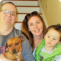 Adopt A Pet :: Richy - Plain City, OH