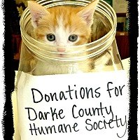 Adopt A Pet :: Pile of Kittens ! - Greenville, OH