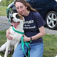 Adopt A Pet :: Zeus - Norfolk, VA