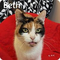 Adopt A Pet :: Beth - Pleasantville, NJ