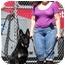Photo 4 - German Shepherd Dog Dog for adoption in Los Angeles, California - Brandy von Beckerstein