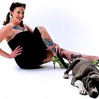 Adopt A Pet :: Bailey - Blanchard, OK