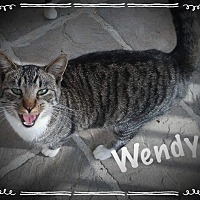 Adopt A Pet :: Wendy - Cleveland, TN