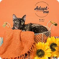 Adopt A Pet :: 71262  Kiki - Wetumpka, AL
