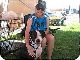 American Pit Bull Terrier Mix Dog for adoption in Blanchard, Oklahoma - Prada