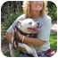 Photo 2 - Pit Bull Terrier Puppy for adoption in San Diego, California - Frannie