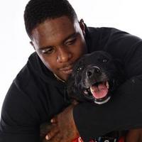 Adopt A Pet :: Jagger - Miami, FL