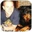 Photo 3 - Rottweiler Dog for adoption in Darlington, Maryland - Cody/Blitz