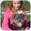 Photo 1 - Yorkie, Yorkshire Terrier Mix Dog for adoption in El Cajon, California - sparkles