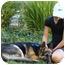 Photo 4 - German Shepherd Dog Puppy for adoption in Los Angeles, California - Rudolf von Ralingen