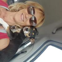 Adopt A Pet :: Gaby - Las Cruces, NM