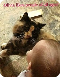 Calico Cat for adoption in Wasilla, Alaska - Olivia