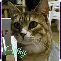 Adopt A Pet :: Cathy - Gonic, NH