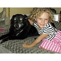 Adopt A Pet :: Sammie - Tempe, AZ