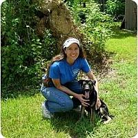 Adopt A Pet :: Petey - Kingwood, TX
