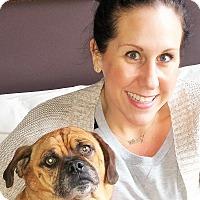 Adopt A Pet :: Bobo - Plain City, OH