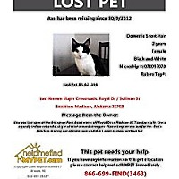 Adopt A Pet :: CHARLOTTE - Madison, AL