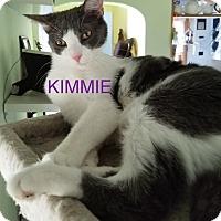 Adopt A Pet :: KIMMIE-new home 8-11-17 - detroit, MI