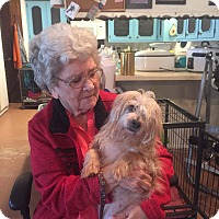 Adopt A Pet :: Rocky - Weatherford, TX