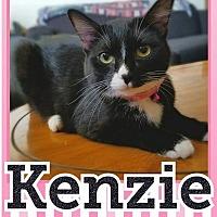 Adopt A Pet :: Kenzie - Edwards AFB, CA