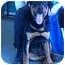 Photo 1 - Rottweiler Dog for adoption in Austin, Texas - Jag