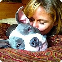 Adopt A Pet :: *Mama Iris* Video - Pasadena, CA