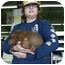 Photo 3 - Redbone Coonhound Puppy for adoption in Lexington, Missouri - LuLu