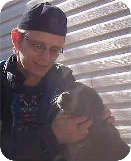 Beagle/Australian Cattle Dog Mix Dog for adoption in Hamilton, Ontario - Cowgirl