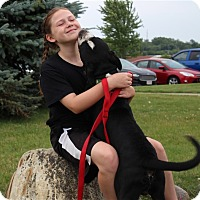 Adopt A Pet :: Buster - Elyria, OH