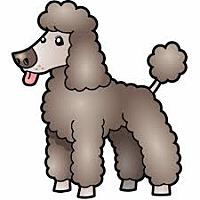 Adopt A Pet :: URGENT on 7/1 SAN BERNARDINO - San Bernardino, CA